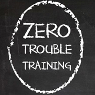 Zero Trouble Training