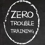 Zero Trouble Training