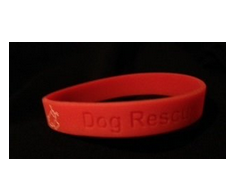 Dog Rescue Dunedin Wrist Band